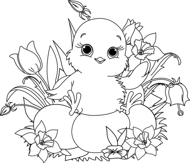 108 best ausmalbilder/malvorlagen images on pinterest | adult ... - Baby Chick Coloring Pages Print