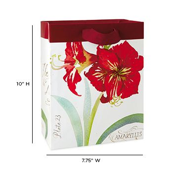 Put your #ChristmasGifts in this beautiful bag featuring a botanical print of a red amaryllis flower. This bag makes for lovely gift packaging this #HolidaySeason. http://bit.ly/2gqFxWM