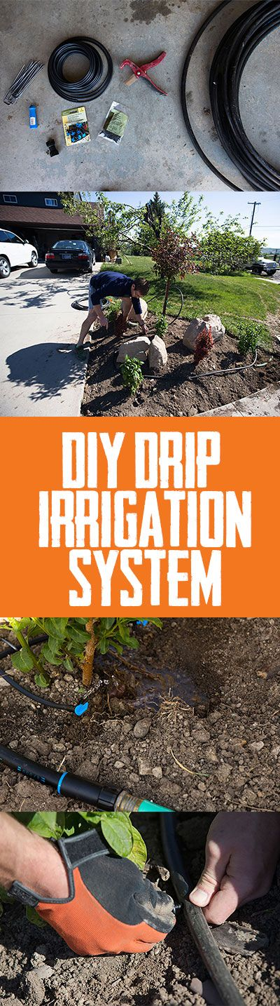 DIY drip irrigation systems water your plants. For you. As in you are no longer hand watering plants. Learn how to DIY right HERE.