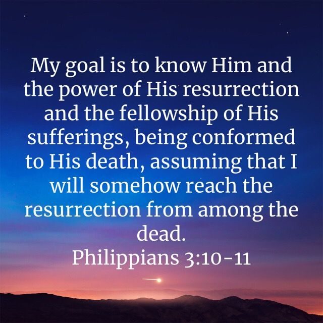 Philippians 3 10 11 Philippians Holman Christian Standard Bible