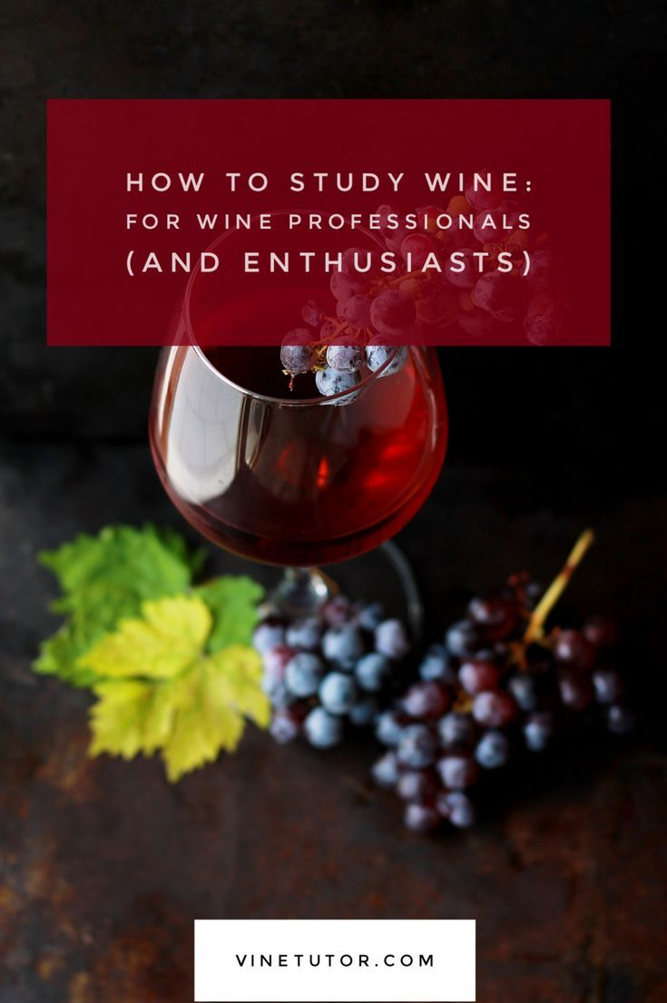 How To Study Wine Wine Knowledge Wine Education