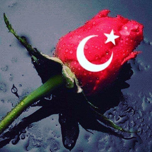 Allah ın selâmı rahmeti ve bereketi üzerinize olsun.  Ülkemizin birlik ,beraberlik ,selameti için. ..Bildiğimiz bilmediğimiz düşmanların kahrolması için.... Cennet Vatanımızın bütünlüğü, milletimizin ferahı için. .. TÜRKİYEM için FETİH Sûresi okumak istiyoruz. Okumak isteyenler yoruma aldım yazabilir mi lütfen ... Duâ müminin silahıdır. (hadisi Şerif )  @mrvsisman kardeşimiz düşünmüş, İnşaAllah Duâ da birlik olalım.  #terorulanetliyoruz #ankara #turkey #lovefromturkey #instagramturkey