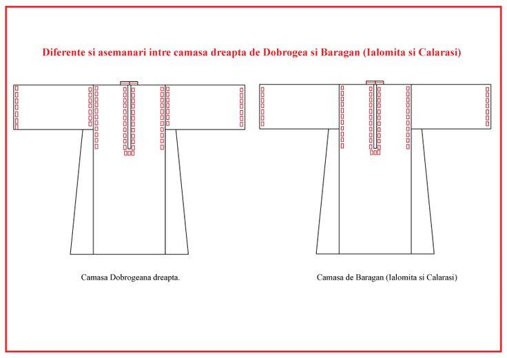 Croiala camasa dreapta specifica din Dobrogea si Campia Dunarii
