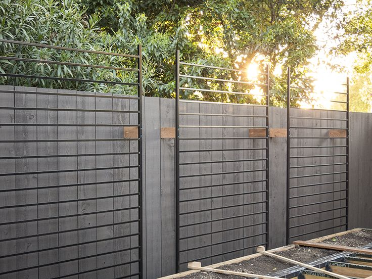 First Alert metal fence panels from Home depot as trellis. $59.00 each.