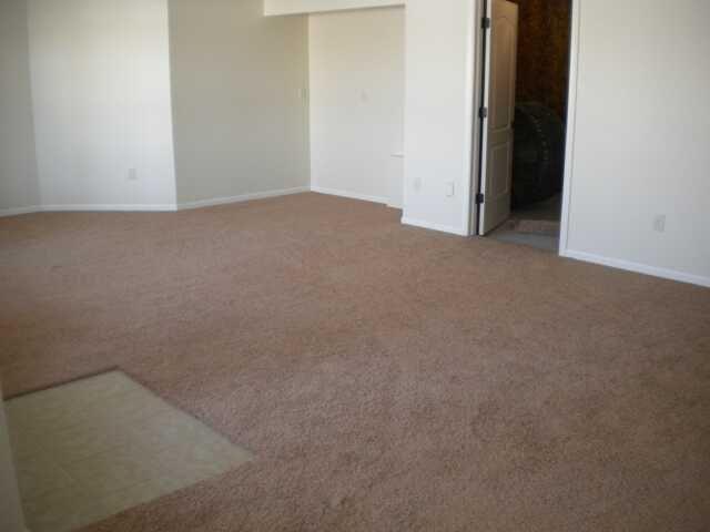 Carpet for basement floor options carpet tiles for for Rugs for basement floors