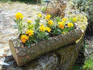 Window Box Planter Wooden Craft Garden Natural Pine Log Gardening That I Love Bo Flowers