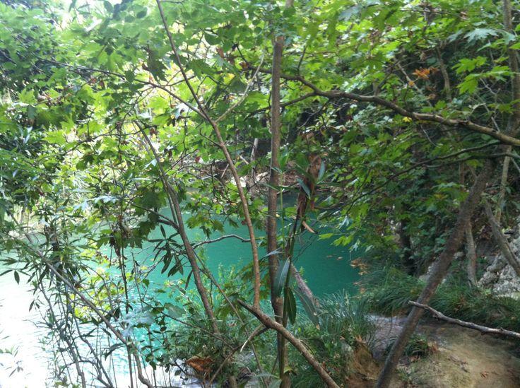 Πολυλίμνιο Μεσσηνίας http://www.eleftheriaonline.gr/polymesa/nature/item/43343-polylimnio