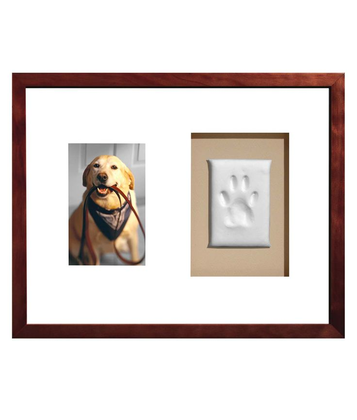 PAW PRINTS KEEPSAKE FRAME |  How Cute is this? Good Idea I'm going to make one myself!    Dog Picture Frame | UncommonGoods  How cute