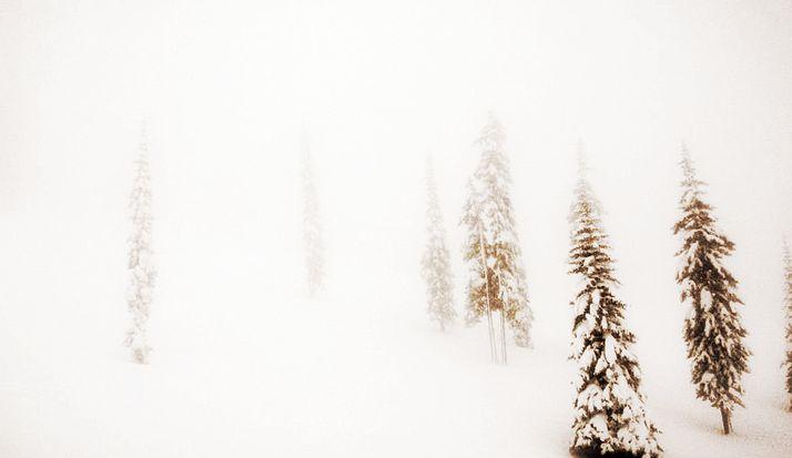 Whitewater Ski Resort, Nelson BC © LG Living Photography
