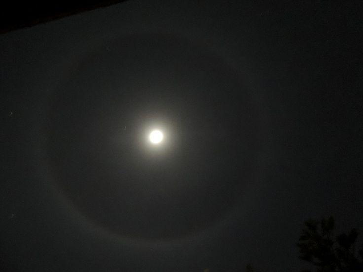 Halo moon!