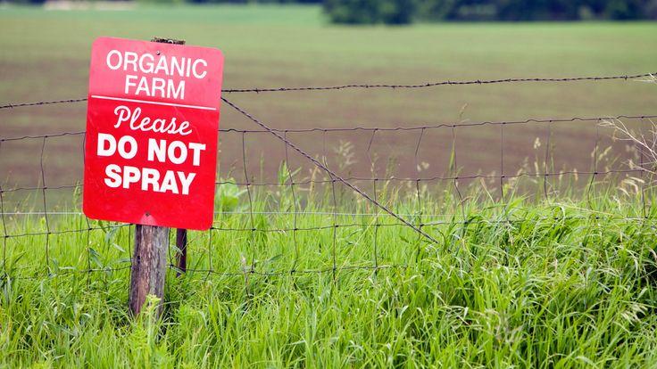 Derfor er økologisk landbruk redningen - Aperitif.no