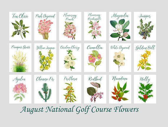 Set di 18 fiore di agosto corso National Golf Club numeri di