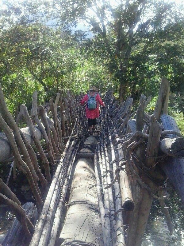 Puente artesanal construido por los indígenas camino a la Sierra Nevada Valledupar Colombia
