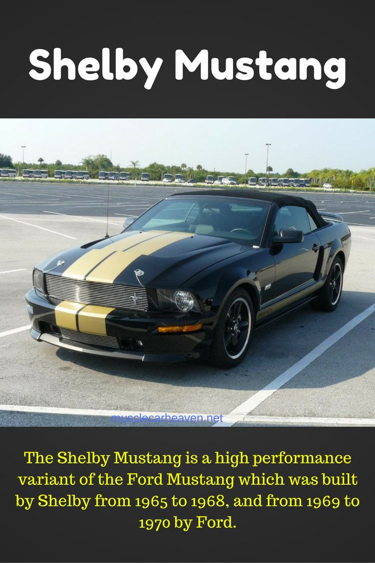 Is a shelby a mustang