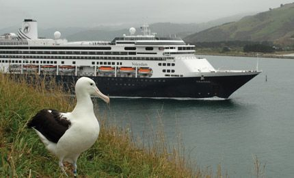 Royal Albatross Centre, Dunedin. Otago