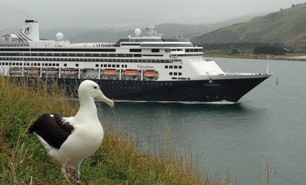 Royal Albatross Centre, Dunedin. Otago