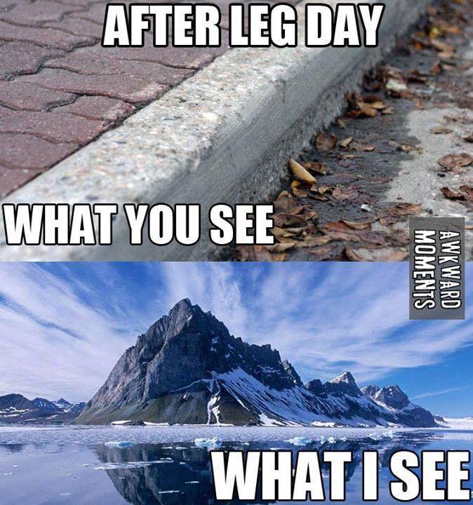 Leg day