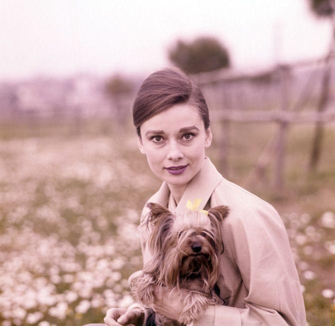 audrey hepburn   Audrey Hepburn, la vida de un icono tras 20 años de su muerte