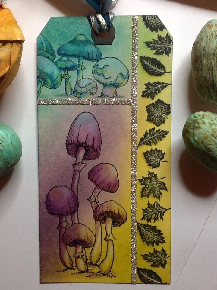 Love mushroom and toadstool images