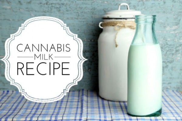 Marijuana Milk is just as versatile as cannabis-butter or cannabis oil, as it can be used in any recipe that calls for milk. Or add 2-3 tablespoons of marijuana milk to your favorite cup of tea. It is important to use whole milk or cream when making this recipe because the cannabinoids, including the psychoactive […]</p>