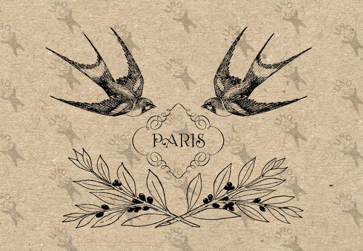 Vintage image Collage illustration French Label Paris Olive Branch Swallow  Instant Download Digital printable clipart graphic  HQ 300dpi by UnoPrint on Etsy