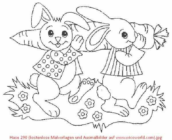 Die Besten 25 Hase Malvorlagen Ideen Auf Pinterest