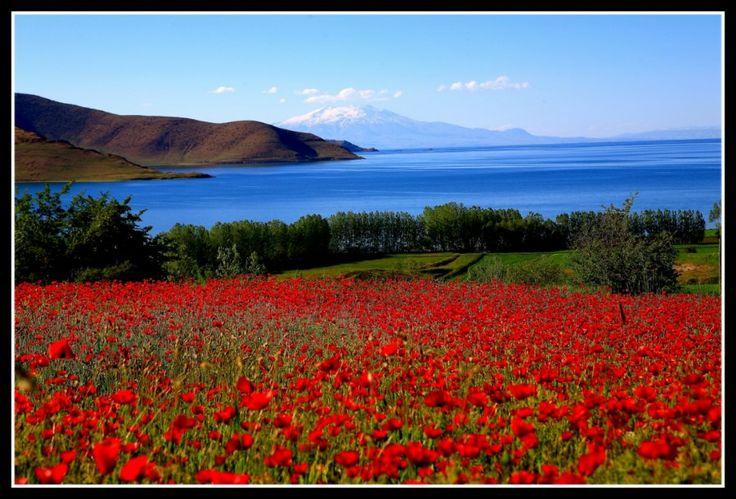 Van lake - Ağrı mountain -Turkey