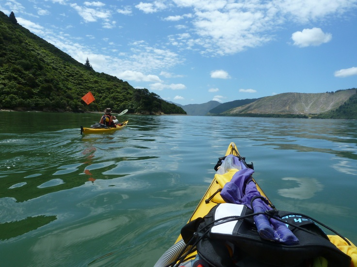 Sea Kayaking, Marlborough Sounds, New Zealand