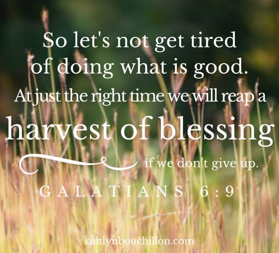 So let's not get tired of doing what is good. At just the right time we will reap a harvest of blessing if we don't give up. Galatians 6:9, NLT