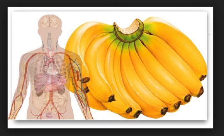 Tudják a majmok, hogy miért szeretik annyira a banánt. Ez a csodás gyümölcs fantasztikus hatással van a szervezetünkre. Most megmutatjuk, miért érdemes gyakran banánt enni. 1. A banán segít a depresszió leküzdésében A banán triptofánt tartalmaz, amely szerotoninná alakul. Köztudott, hogy a szerotonin fontos ahhoz, hogy vidámság érzetünk legyen. 2.[...]
