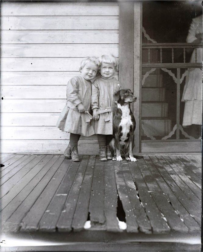 Little twin girls, and their dog, on a wooden porch.