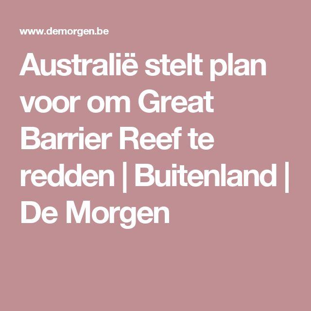 Australië stelt plan voor om Great Barrier Reef te redden | Buitenland | De Morgen