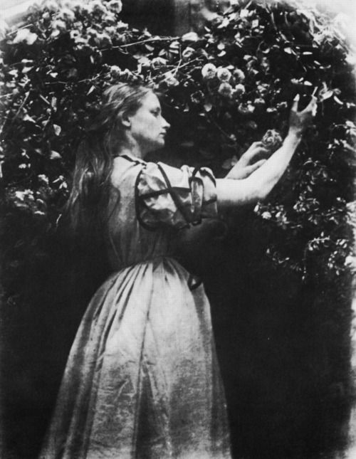 Julia Margaret Cameron, Maud from Tennyson's Idylls of the King, c. 1867-74