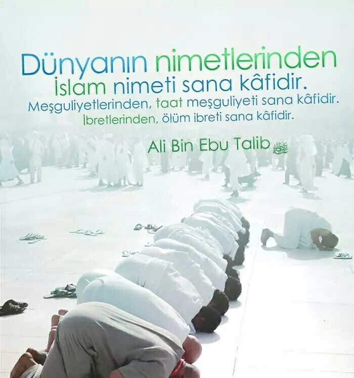 Dünyanın nimetlerinden İslam nimeti sana kâfidir. Meşguliyetlerinden, taat meşguliyeti sana kâfidir. İbretlerinden, ölüm ibreti sana kâfidir. | Ali Bin Ebu Talib (radiyallahuanh)  #dünya #nimet #islam #müslüman #meşgul #ibadet #ölüm #söz #hzali #sözler #hayırlısahurlar #ilmisuffa