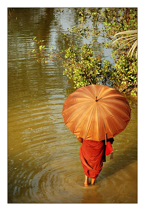 Moine dans la rivière, ombrelle, Mrauk U, Birmanie (Myanmar)