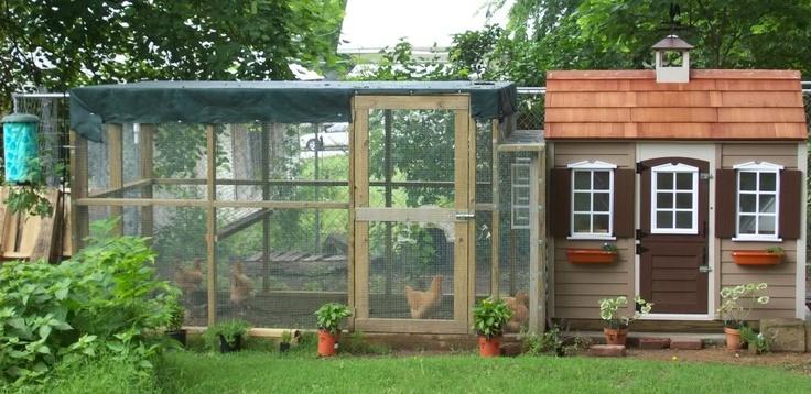 houses hen house backyard chickens big backyard backyard chicken coops