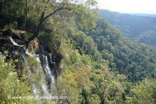 Goomoolahra Falls  Springbrook National Park, Queensland, Australia