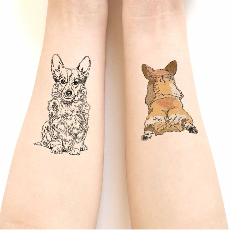 Corgi dog tattoos stickers // paintbrush and sketch texture . Special gift.Gift for Her. by marukopum on Etsy