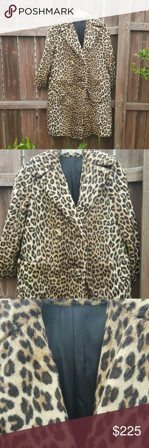 25+ best ideas about Leopard coat on Pinterest   Leopard ...