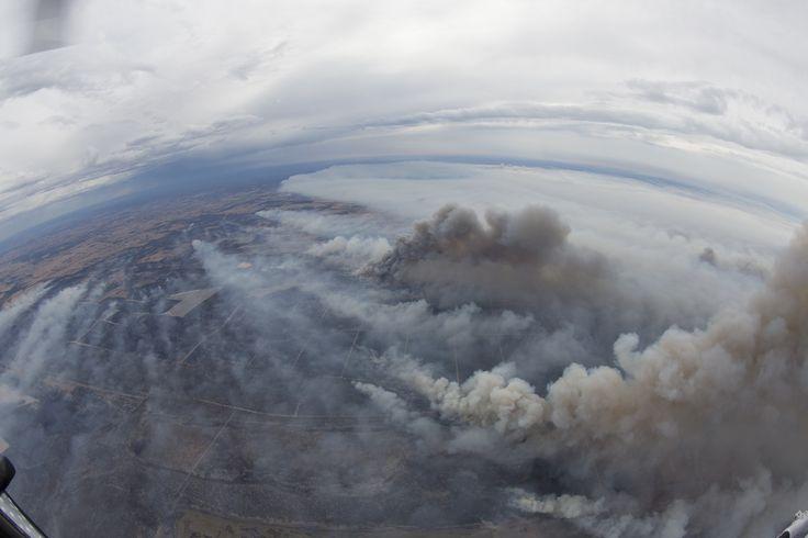 Winds ease in fire zone - The West Australian