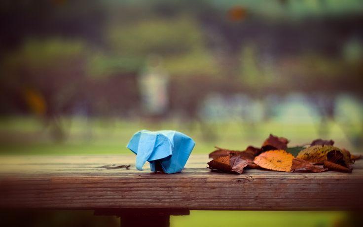 оригами, слон, бумага, листья, боке, origami, elephant