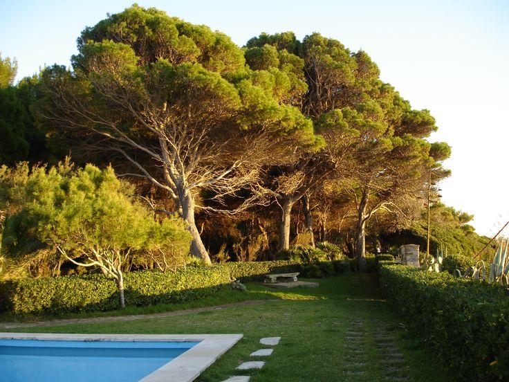 AMAL1684/ AMALFI/ ITALY #indigolodges #luxurytravel #travel #luxury