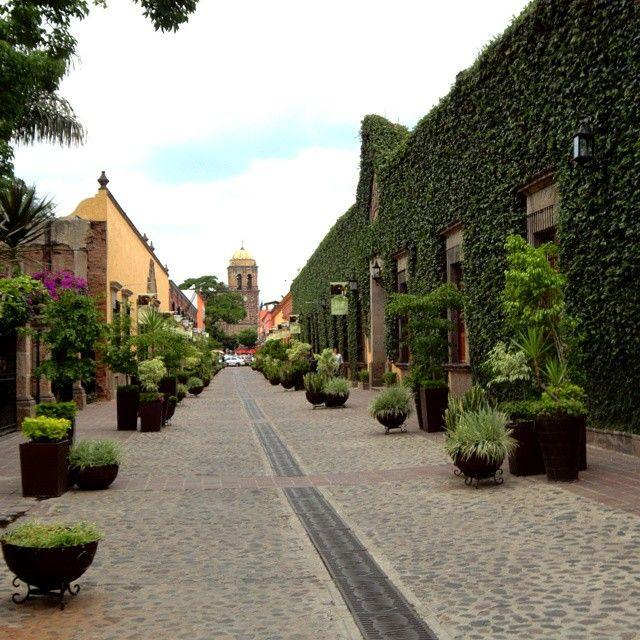 Qué más se le puede pedir a este andador, en Tequila,Jalisco,Mexico