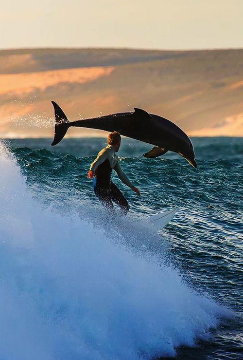 Trent Sherbourne | Kalbarri, Australia | photographer: Matt Hutton