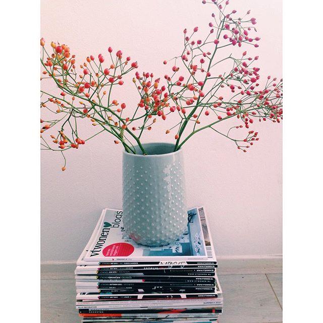 Deze vaas van de nieuwe HEMA wooncollectie is leuk om zelf te kopen, maar misschien nog wel leuker om cadeau te krijgen! Bedankt voor je mooie foto Ruth.