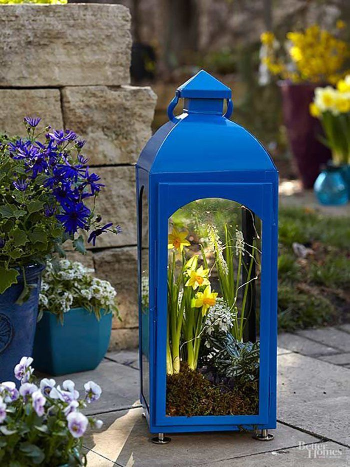 To make a lantern come to life, just add bright spring plants and the twinkle of mini lights, and watch your terrarium truly shine. Indoor Garden, Indoor Plants, Outdoor Gardens, Home And Garden, Succulents Garden, Garden Pots, Blue Garden, Succulent Plants, How To Make Terrariums