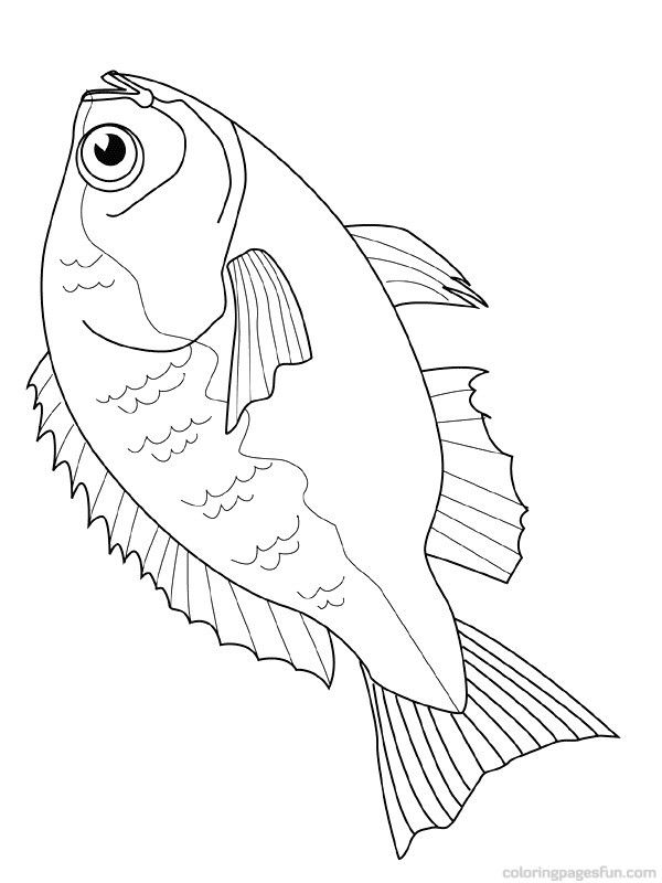 Free Downloadable Jumbo Fish Coloring Pages