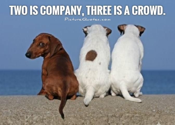 Two is company, three is a crowd. Picture Quotes.