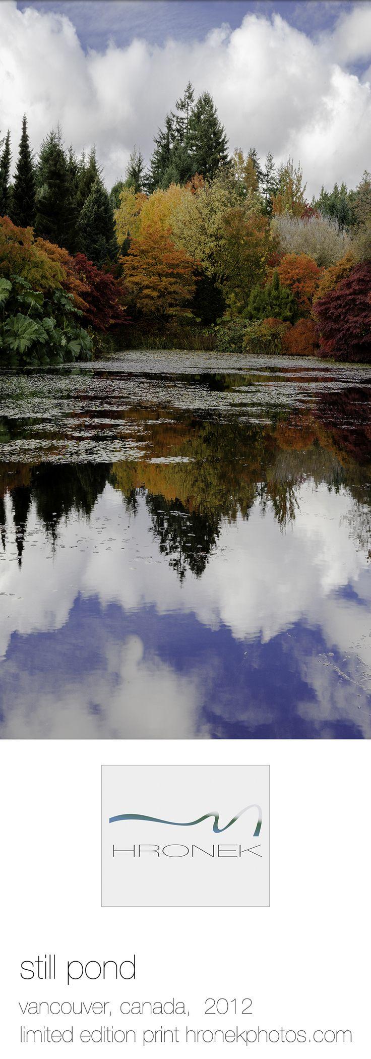 autumn tree mirroring in a park lake; queen elizabeth park, vancouver, canada