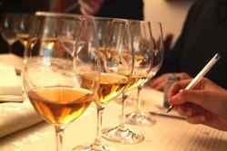 Movimento #Turismo del #Vino #FVG | Incontri di #degustazione nel silenzio degli occhi!